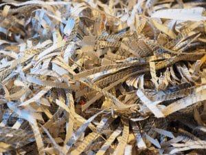 shredder-779853_1920